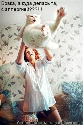 http://blogs.bashtanka.info/home/2011/10/16/11/dnevnik/img/95/1327997620.jpg